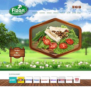 تصميم وبرمجة موقع لشركة Fizan